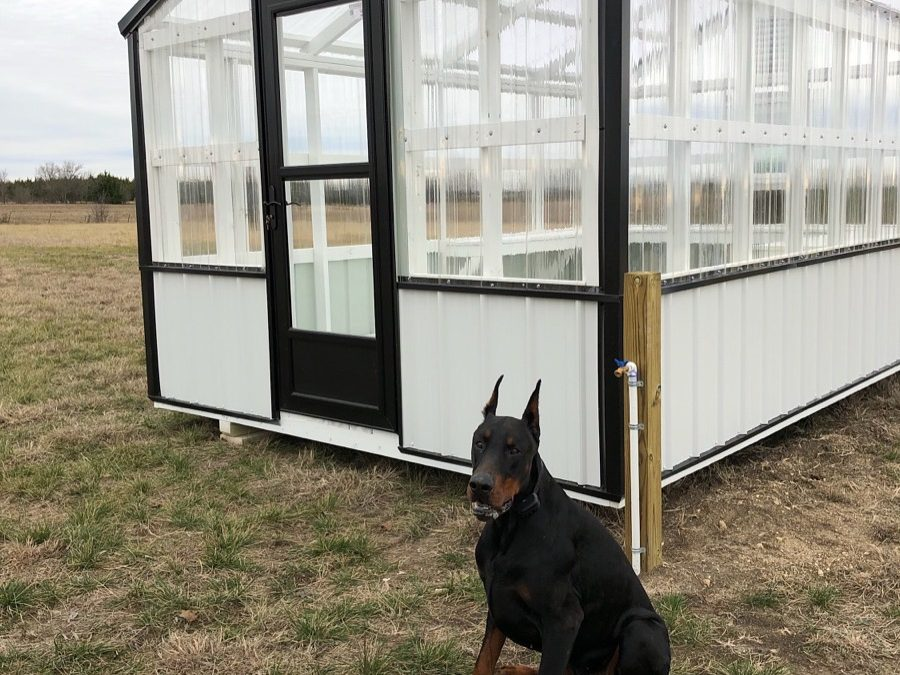 How to Make a Greenhouse Functional