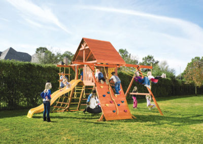 Parrot Island Playcenter with Wood Roof