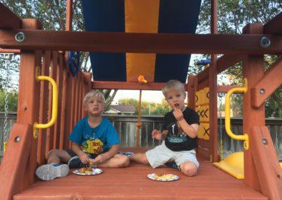 Farm-and-yard-tx-parrot-island-playground-customer-swingset-2
