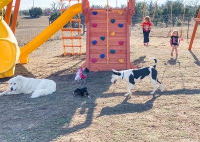 farm-and-yard-central-texas-58-jaguar-playground-customer-1