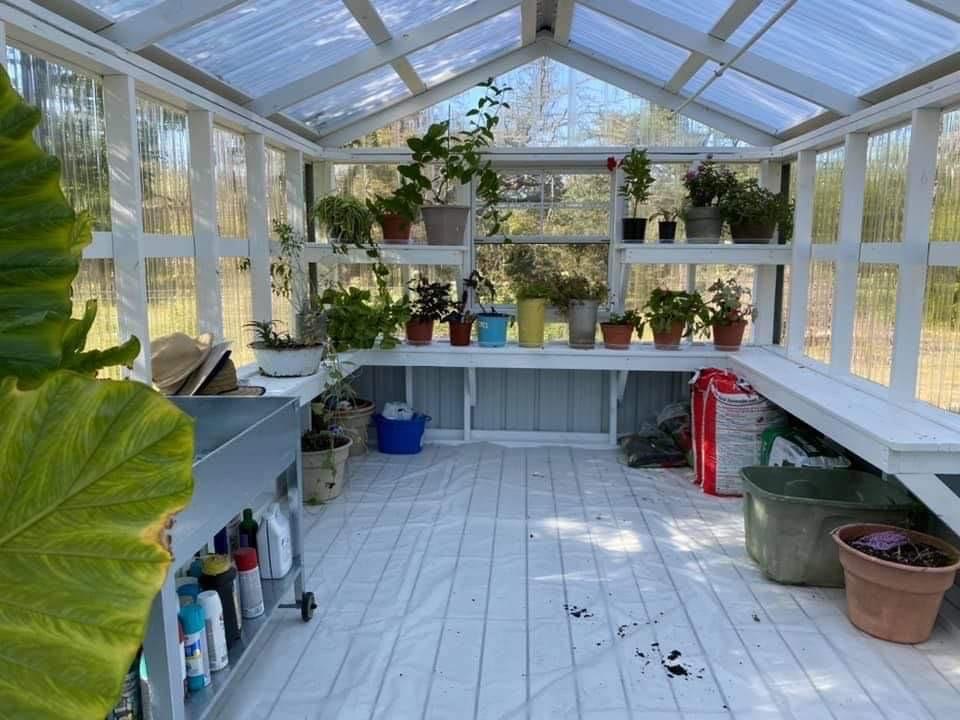 organized greenhouse_farm and yard tx